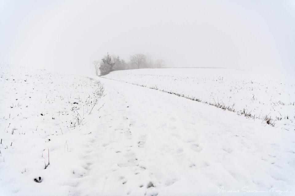 Schaffhauser Winter